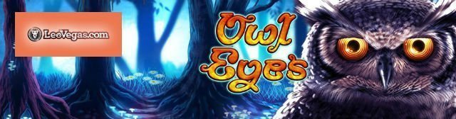 owl-eyes main