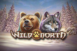 Wild North