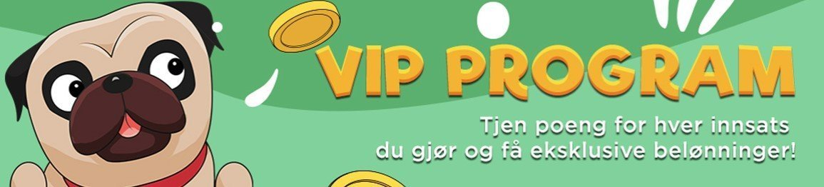 Slotjerry casino Vip program
